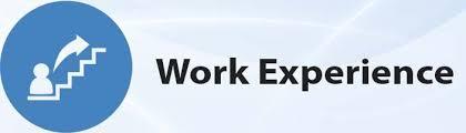 WORK EXPERIENCE.jpg
